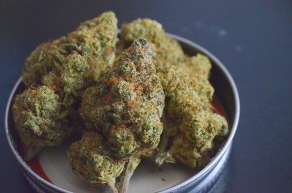 Buy mimosa strain online UK,mimosa strain for sale UK, backpack boyz weed for sale, order weed mail delivery, buy a pound of weed in UK