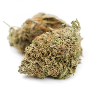 buy purple candy strain online, purple candy strain for sale, buy weed delivery UK, buy weed sheffield, weed strains uk